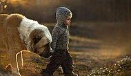 Как правильно фотографировать детей? 23 сказочных фотографий от русской мамы