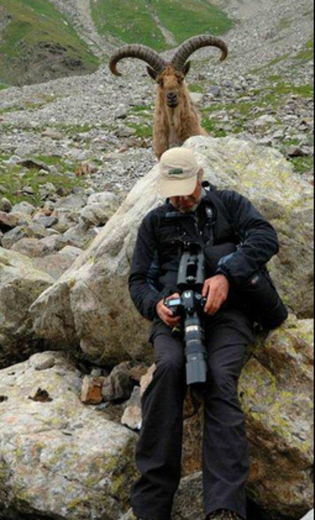1. Bu vahşi yaşam fotoğrafçısı