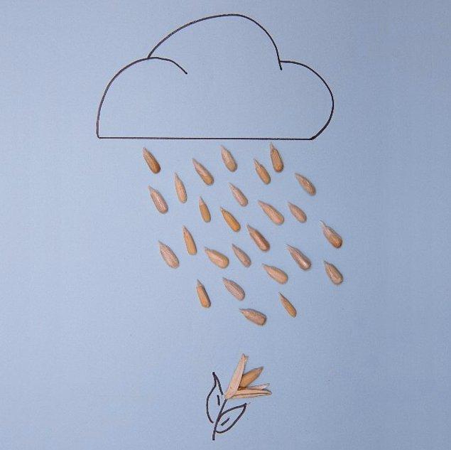 5. yaz yağmuru..