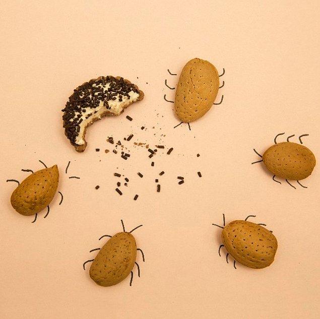 8. badem bıyıklı böcekler..