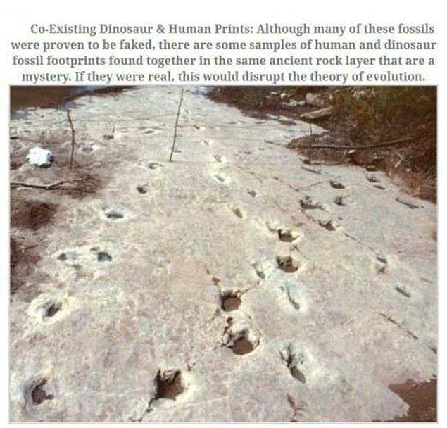 7. Dinazorlarla İnsanlar Aynı Zamanda Mı Yaşadı?