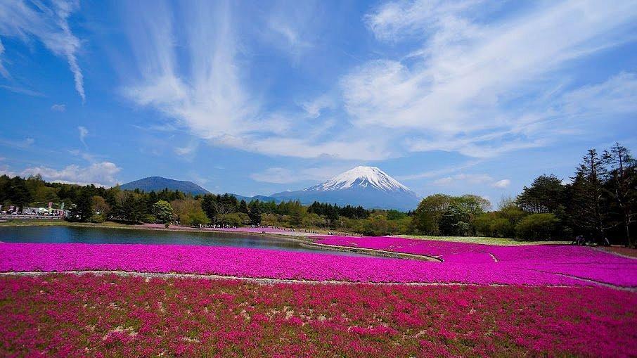 Fuji-Hakone-Izu National Park, Honshu - Japonya