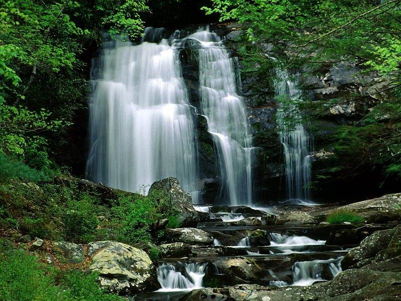 Great Smoky Mountains National Park, Tennessee - United States