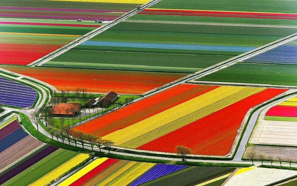 22 Places Showing the Hypnotizing Colors of Our World