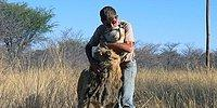 11 Years Old Friendship Between A Lion And The Man Who Saved Him, Will Make You Cry