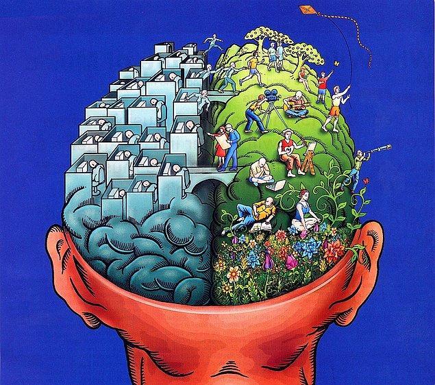 9. Bütün beyin hücreleri birbirinin aynısı değildir. 10 binden fazla spesifik nöron türü olduğunu düşünülüyor.