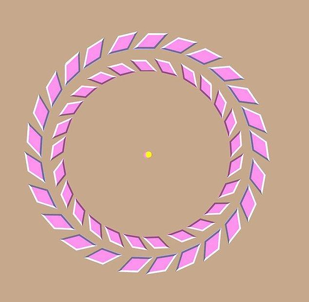 27. Sarı noktaya bakın sonra başınızı ekrana doğru yaklaştırdığınızda pembe halkaların hareket ettiğini göreceksiniz.
