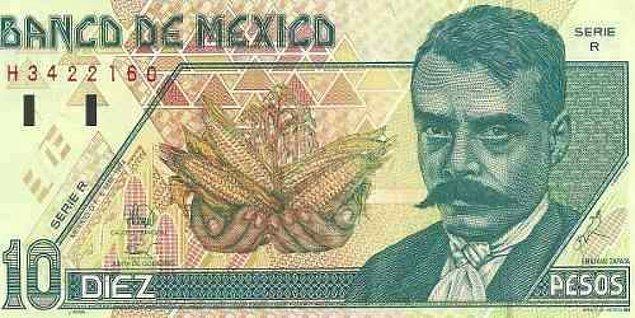 8. Ayala Planı, meksika tarihindeki en radikal değişim planıydı, toprakların kademeli olarak kamulaştırılmasını ve devrim sırasında kayıp veren ailelere maaş bağlanmasını öngörüyordu.