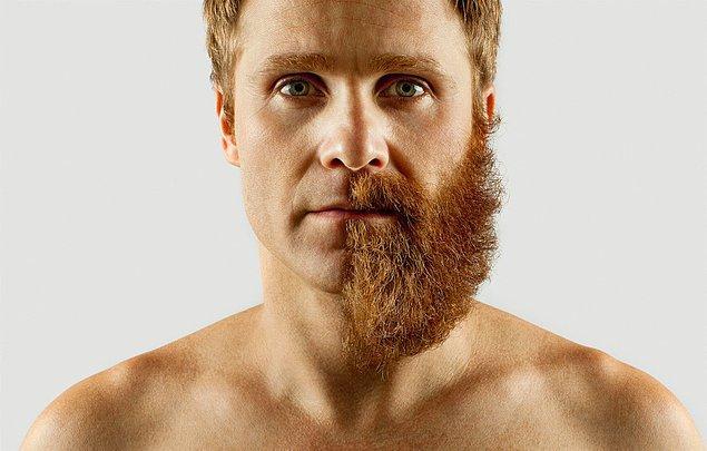 Adrian Alarcon sakalının uzaması için tam 4 ay bekleyip ardından yarısını yok etmiş ve kendi yaptığı fotoğraf çekimlerinde sakalının diğer yarısını birbirinden farklı şeylerle tamamlıyor.