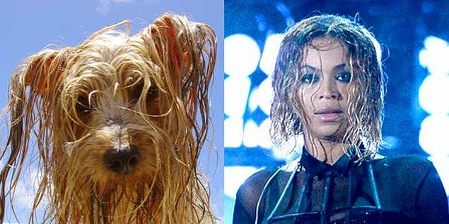 2. Beyoncé Howles