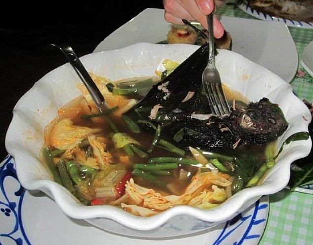Yarasa çorbası ya da salatası - Palau Adaları