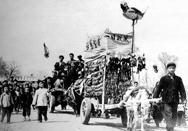 5. Serçeleri kaçırmak için on binlerce korkuluk ve kırmızı bayrak üretildi.