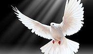 200 Aydından 1 Eylül'de Barış Çağrısı