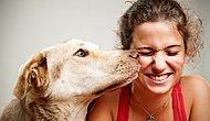 Doğada Kurduğumuz En Güzel Dostluk: Köpeklerle İlişkimiz Nasıl Başladı?