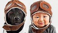 Нерушимая связь детей и собак