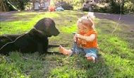 17 ГИФов о настоящей дружбе малышей и собак