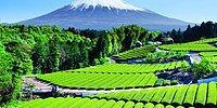 13 фоток с полезной информацией о Японии