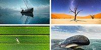 Лучшее за 2015: топ 50 фотографий со всего мира