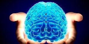 Тест: Какой у тебя склад ума? Математический или гуманитарный?