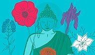 7 простых способов медитировать, которые улучшат вашу жизнь