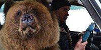 15 смешных фотографий о нашей удивительной России
