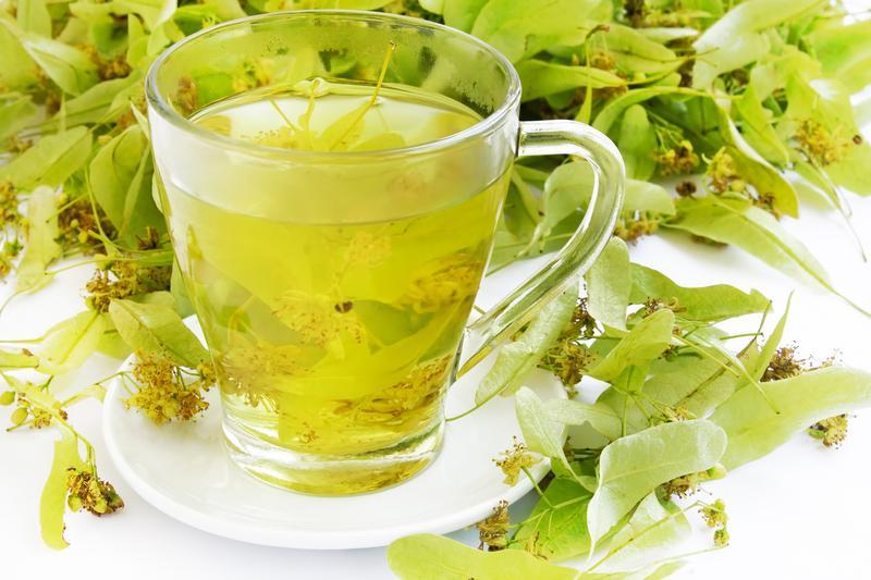чай из лепестков липы польза и вред день, недавно