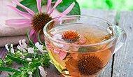 Вылечи себя сам! 10 горячих напитков от простуды и гриппа