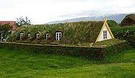Вертикальные сады: 30 домов с зелеными стенами