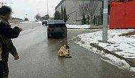 İnsanlığın Bittiği An: Otomobilinin Arkasına Bağladığı Köpeğini Sürükledi