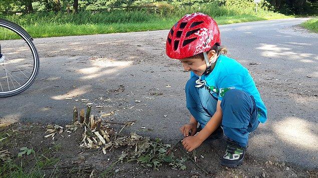 30. Tibet Çınar doğada mutlu. Çocuklar kendi yaratıcılıklarını kullanarak bizim çer çöp dediğimiz şeylerle dahi oyun kurabilir.