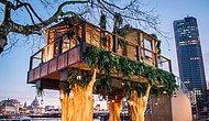 Африканский домик на дереве в самом центре Лондона