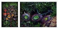 Sen Gory – невероятные украшения, созданные самой природой