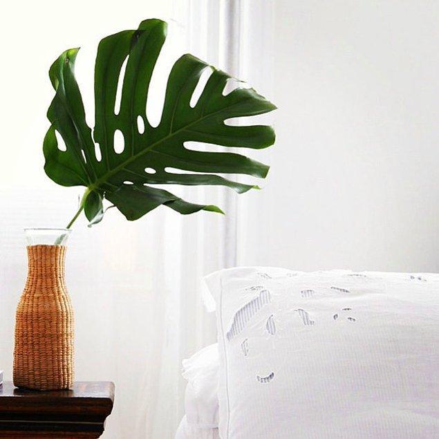 6. Dışarıdan güzel bir dal ya da büyük bir yaprak kapın ve çoktan elinizde olan bir vazoya koyun