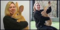 Гигантский кролик размером с собаку ищет хозяев