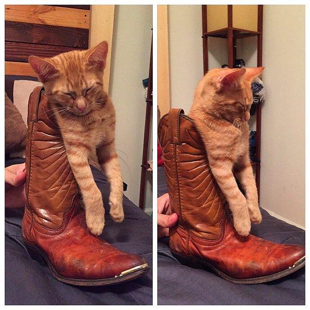 """15. """"Çizmeli kedi bendendir evet..."""""""