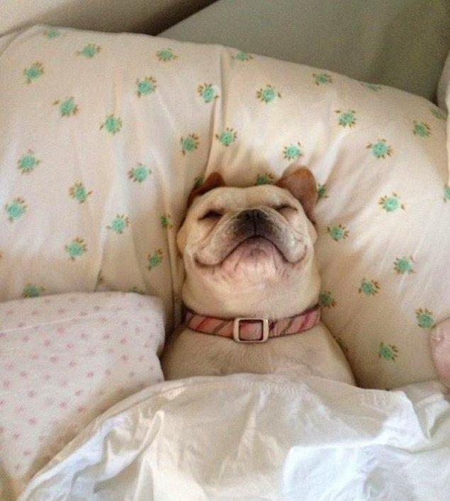 3. Nasıl da Kaptım Yatağı :)