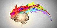В чем выражается твоя креативность?