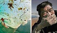 25 фотографий, доказывающих, что наша планета в серьезной опасности