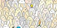 Сможешь ли ты найти пасхальное яйцо на этой картинке?
