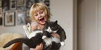 13 Questions You Need To Answer Before You Go And Get A Pet!