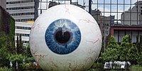 25 самых странных рекордов Гиннесса