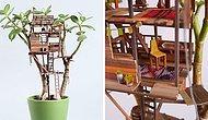 Домики для фей или как украсить денежное дерево