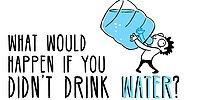 Какова роль воды в нашем организме?