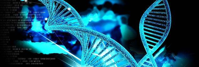 14. Genetik Mühendisliği