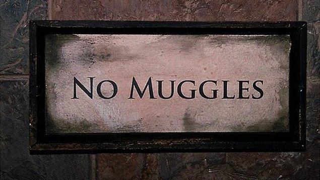 Salazar Muggle ailesinin hizmetlerini görüyor ve bahçeyi yabani otlardan temizliyor. Görevi buyken bir gün bir yılanın ona doğru geldiğini görüyor. Onunla konuşuyor ve ona buradan kaçacağını söylüyor