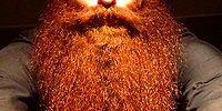 28 Guys Taking The Beard Trend A Bit Too far!