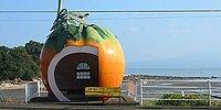 Заботимся об экологии креативно: необычные автобусы и остановки из Японии
