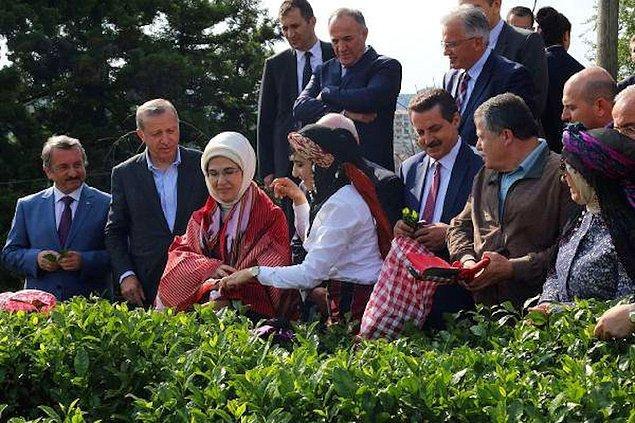 Yüksek yargının Erdoğan'ın ziyaretine eşlik etmesi ve eleştiriler: 'Yadırganacak bir durum değil'
