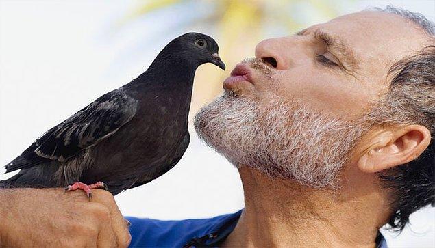 12. Kuş sesleri ve insan konuşması birçok benzer özelliğe sahip.