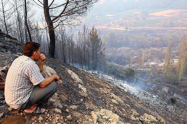 Bölgede büyük hasara yol açan yangından kareler...